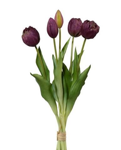 Kvety, vázy Möbelix