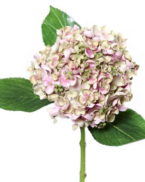 Ružová váza BedTex