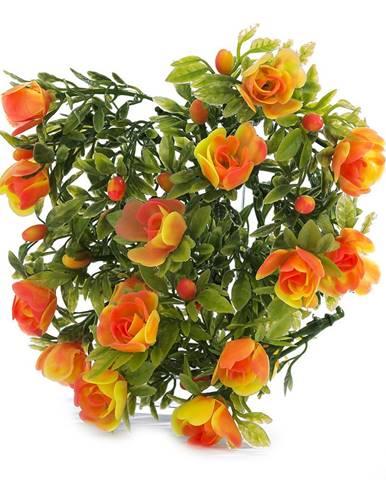 Kvety, vázy Albani