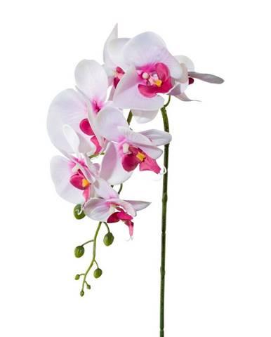 Kvety, vázy Yato