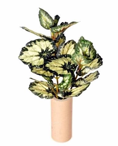 Kvety, vázy Berlinger Haus