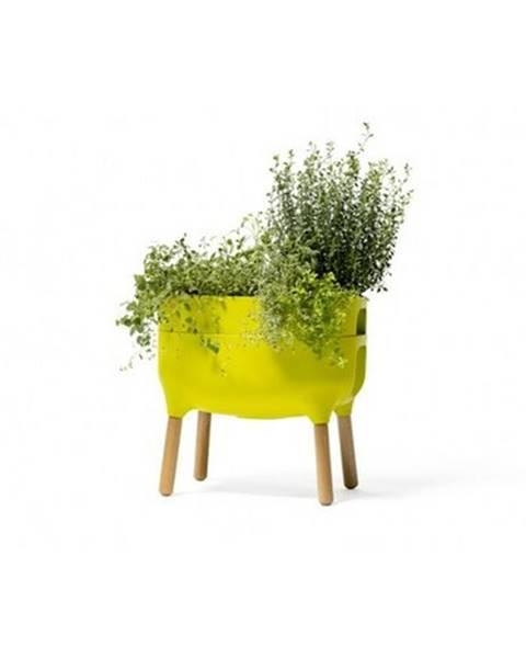 Zelený kvetináč Plastia