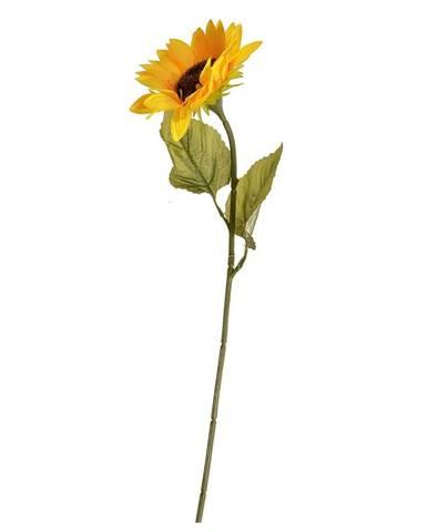 Kvety, vázy Beper