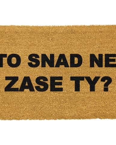 Koberce Artsy Doormats